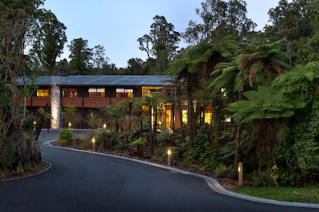 Rain Forest 6