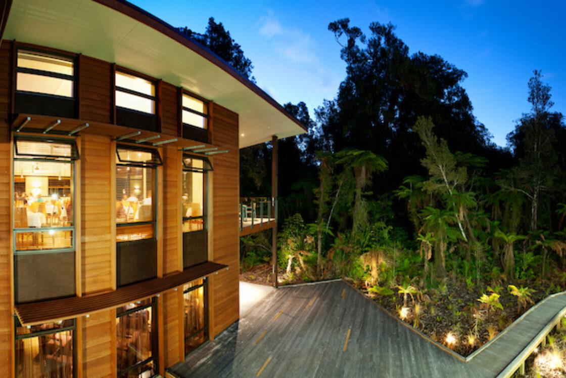 Rain Forest 7